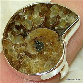 Ammonite Fossil Sterling Silver Ring size R. Silver Gemstone Ring.