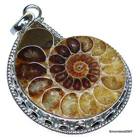 Ammonite Fossil Sterling Silver Pendant