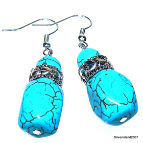 Modern Design! Turquoise Fashion Jewellery Earrings