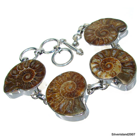 Exclusive Ammonite Fossil Sterling Silver Bracelet