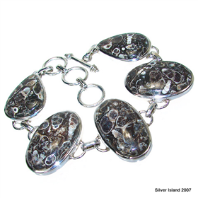 Exclusive Chunky Turitella Fossil Sterling Silver Bracelet